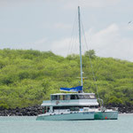 Lonesome George Katamaran (Lonesome George Catamaran)