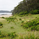 Pebbly Beach in Murramarang National Park