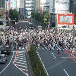 Berühmte Shibuya Kreuzung
