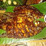 Fisch gegrillt nach Sunda Art mit süße Soja-Sauce