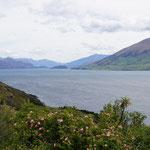 Wanaka See (Lake Wanaka)