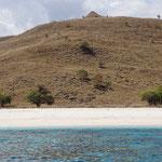 Strand auf der Insel Komodo (Beach at the Komodo island)