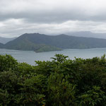 Buchten bei Picton (Bays around Picton)