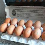 卵が笑ってる。