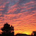 夕焼け空 / sunset sky
