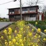 花と小屋 / flower & shack