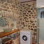 Salle de bains avec douche et machine à laver