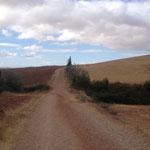 Camino Francés : EL Camino de Santiago サンティアゴ巡礼路 ーフランス人の道ー  スペイン北部 2012年