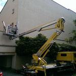 Vergrämung-Spechtloch-Fassade-Gardemann