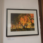 Feuerbild von Gerald Wilfling