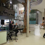 Eva Panner-Frisch gibt für uns ein Konzert