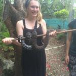 Im Botanischen Garten gab's auch eine Schlange...