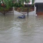 Hurrikan María ließ unsere Straße zu einem Fluss werden...
