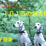 『101匹のお犬様』