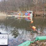 荒池ため池除染
