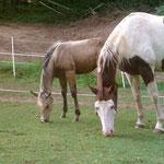 Tante Bo und Baby Big