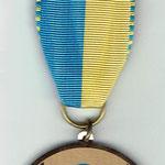 Bro 49 Medaille 50 Jahre TV Wohlen
