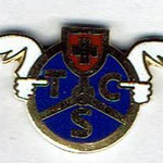 TCS 22