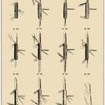 Offiziersesser-Katalog 1903