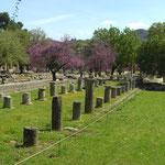Ausgrabungen in Olympia!