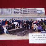 平成15年3月 旧中川河川敷 桜植樹式