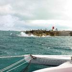 Die Klippen von Cat Cay
