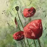 Mohnblumen 5, Aquarell auf Papier, 32 x 24 cm