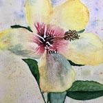 Hibiskus, Aquarell auf Papier, 32 x 24 cm