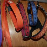 Norwegerbrustgeschirr Musterband Carè und Hundehalsbänder Nr.15