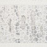 algae, Radierung / etching