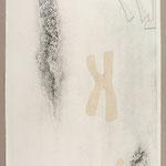 chromosom/ Collage, Radierung / etching