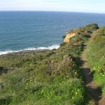 Wanderwege an der Küste Portugals Urlaub am Atlantik Nazare