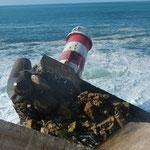 Der Atlantik schafft auf die Dauer auch große Felsen