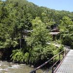 南側アプロ-チ(釣り橋)