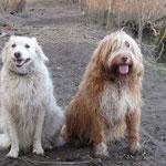 Finnja & Gizmo