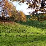 Herbstlandschaft im Stinderbachtal; Foto: E. Klein