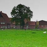 Hof Minning in Sendenhorst