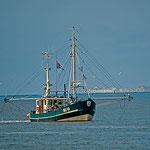 Krabbenkutter auf dem Weg zum Festland