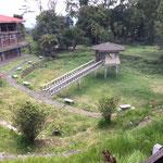 Japanischer Garten Ashram