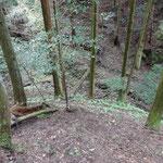 小さな木製の橋を発見