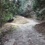 下っていくと、また林道の分岐。右は壺笠山へ続きます
