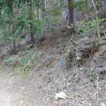林道へ下りました。登りのしるしは先が赤い棒。
