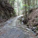 コンクリートで簡易舗装されている道を登ります。