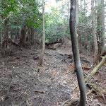 斜面を登り切ったところで、右手に素掘りの道が続きます