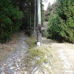 左は崇福寺跡の金堂へ行く道。自然歩道は右へ。砂利道です