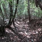素堀の山道を登ります。