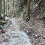 木の根株にまた火の用心。左手の山道を登ると「山城北線54号」へ続きます。