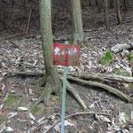 高島線113号、114号こっちの標識発見