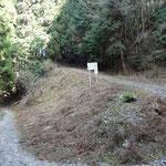 平子谷林道から山肌を登っていく林道支線。