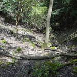 右手の川の上流に向かって、崖を駆け下ります。